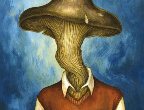 Coupe champignon