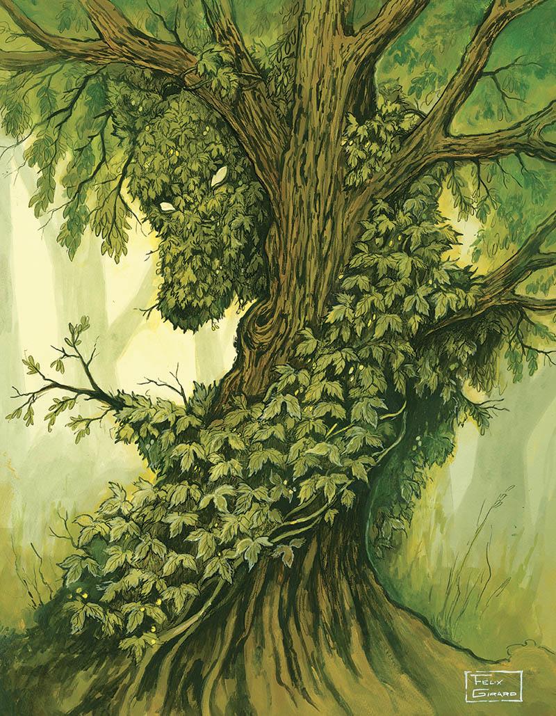 Loup des saules - illustration par Félix Girard